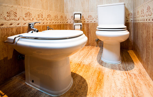 Clogged Toilet U0026 Bathroom Repair Services In North Jersey And Boonton, ...